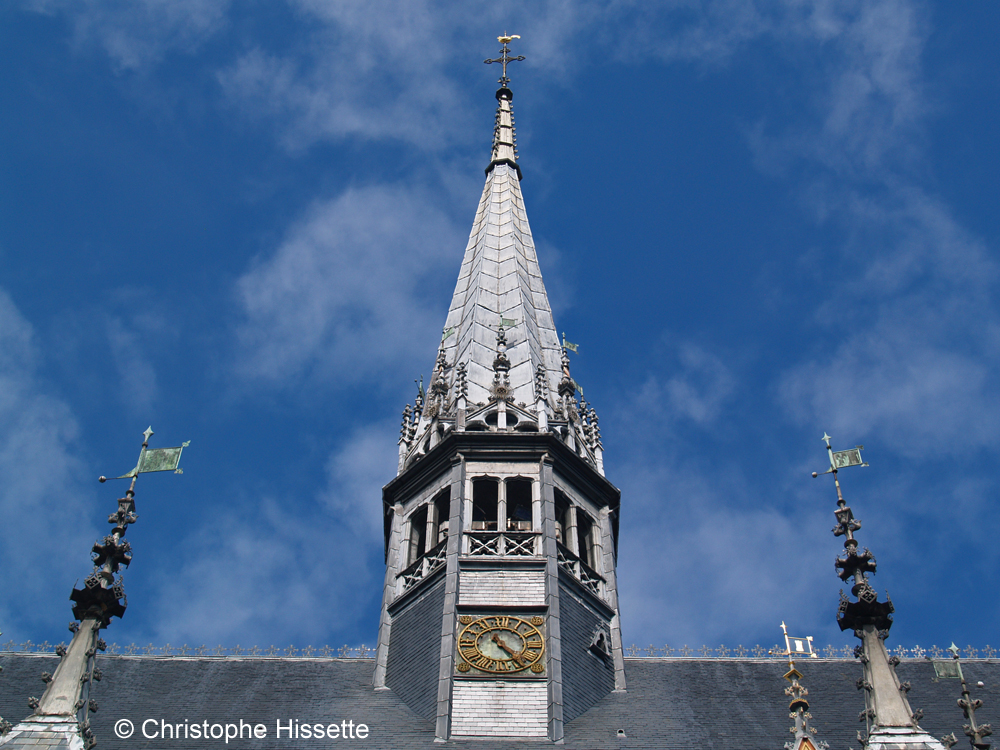 Flèche de la toiture de la salle des Pôvres, Hospices de Beaune, Hôtel-Dieu, Burgundy, France