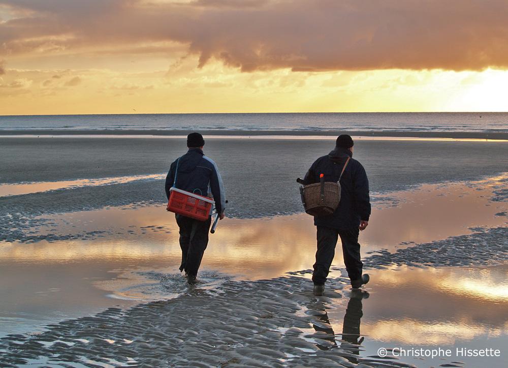 Pêcheurs à pied Côte d'Opale France