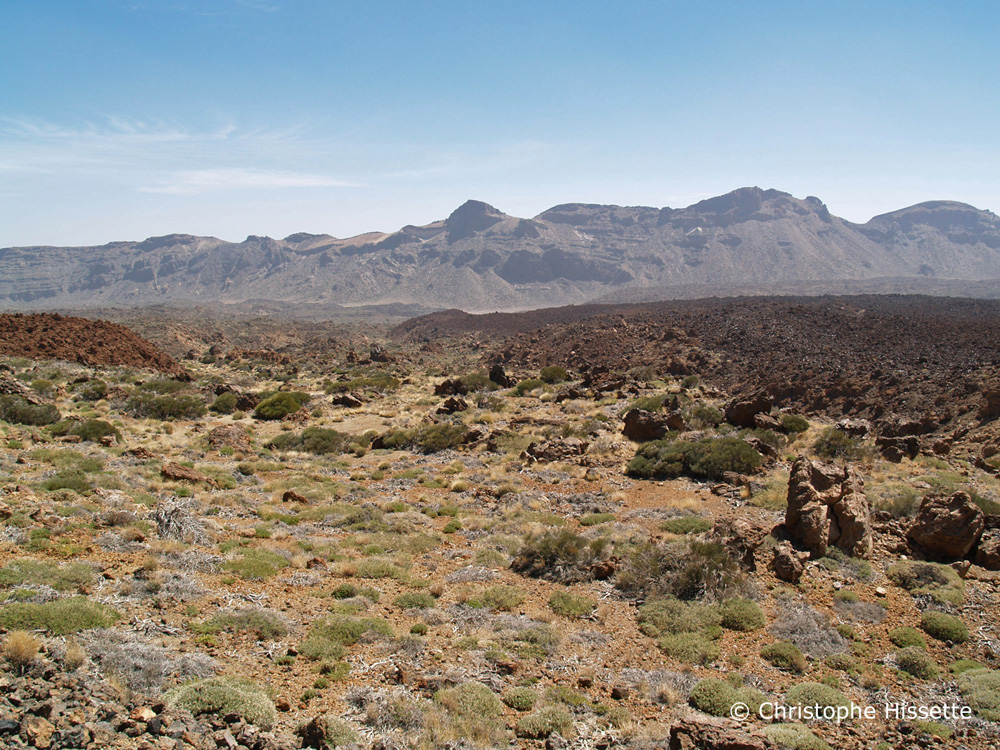 Las Cañadas del Teide, Parc National du Teide, Tenerife