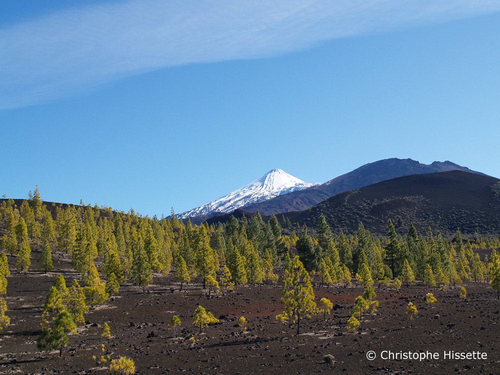 Samara and Teide Volcanoes, Teide National Park, Tenerife
